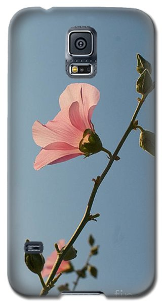 Pink Galaxy S5 Case by Louise Fahy