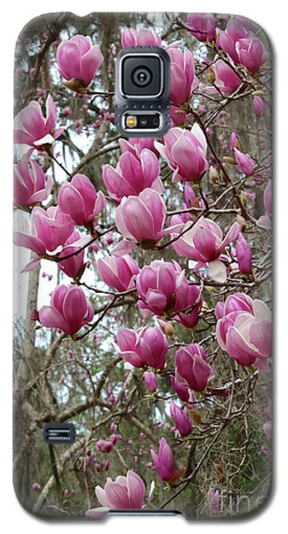 Saucer Magnolia Galaxy S5 Case - Pink Magnolia Perspective by Carol Groenen