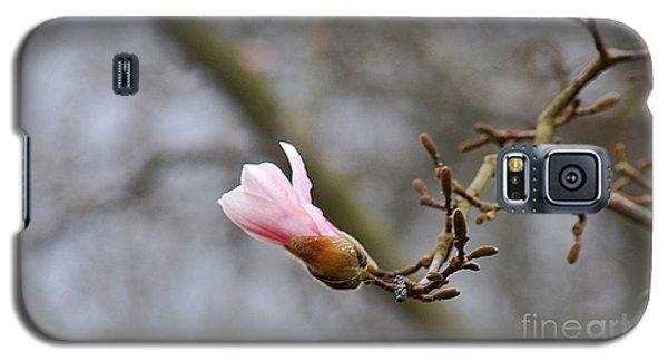 Pink Magnolias 20120321_54a Galaxy S5 Case