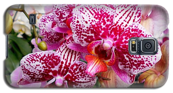 Pink Moth Orchids Galaxy S5 Case