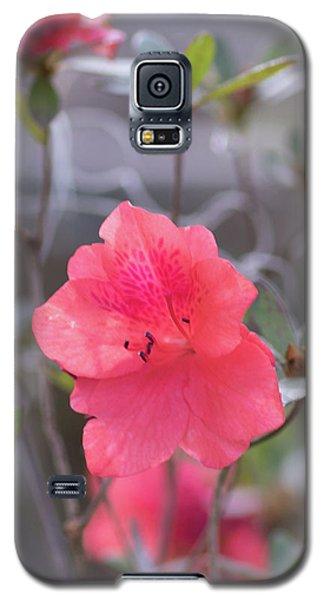 Pink Orange Flower Galaxy S5 Case