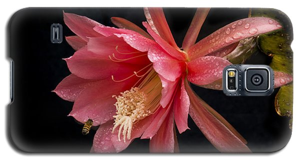 Pink Orchid Cactus Flower Galaxy S5 Case by Inge Riis McDonald