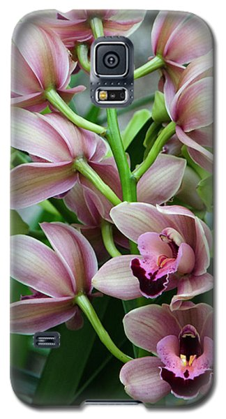 Galaxy S5 Case featuring the photograph Pink Orchids 2 by Ann Bridges