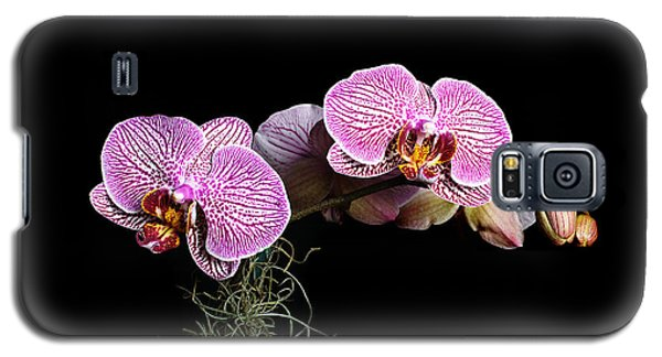 Galaxy S5 Case featuring the photograph Pink Orchids by Gary Dean Mercer Clark