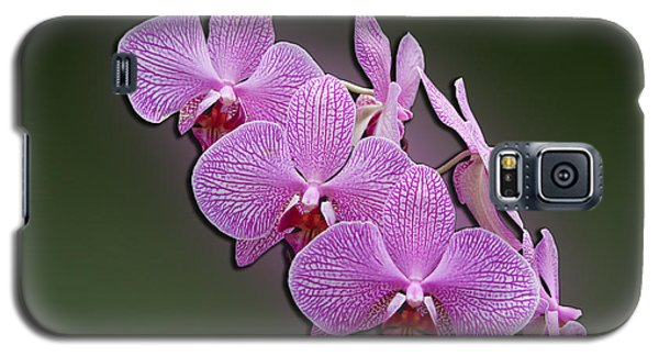 Galaxy S5 Case featuring the photograph Pink Orchids by John Haldane