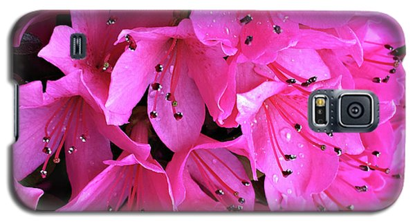 Galaxy S5 Case featuring the photograph Pink Passion In The Rain by Sherry Hallemeier