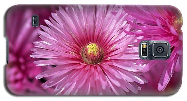 Pink Pigface Flowers Galaxy S5 Case