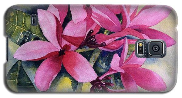 Pink Plumeria Flowers Galaxy S5 Case