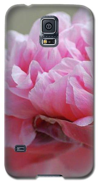 Pink Poppy Galaxy S5 Case