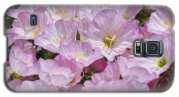 Galaxy S5 Case featuring the photograph Pink Primrose by Bonnie Muir