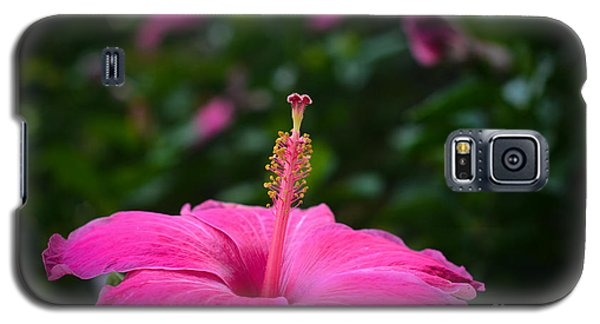 Galaxy S5 Case featuring the photograph Pink Romance by Kelly Wade