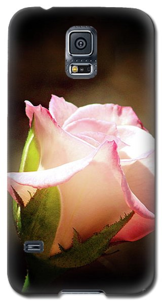 Pink Rose 2 Galaxy S5 Case