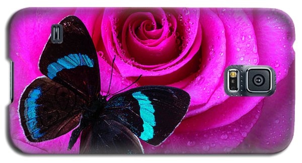 Pink Rose And Black Blue Butterfly Galaxy S5 Case