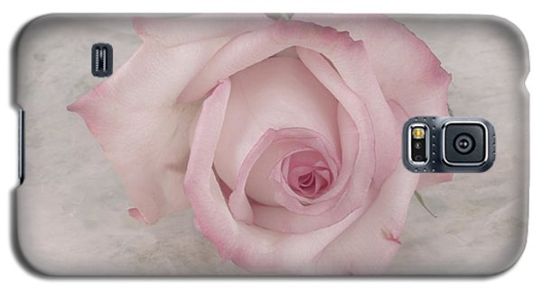 Pink Rose Beauty  Galaxy S5 Case by Sandra Foster