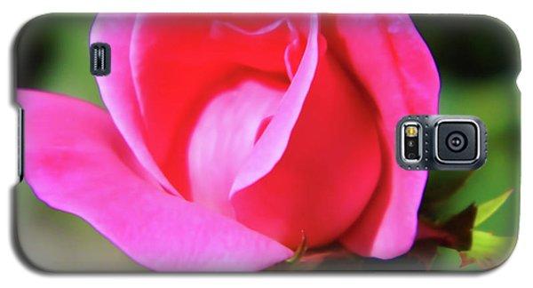 Pink Rose Bud Galaxy S5 Case