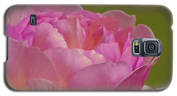 Pink Rose #d3 Galaxy S5 Case