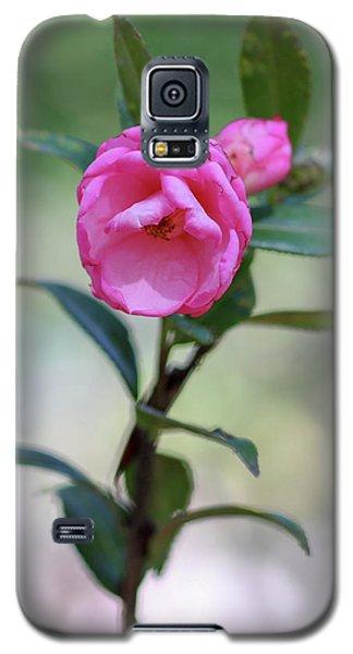Pink Rose Flower Galaxy S5 Case