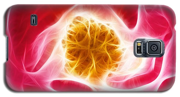 Pink Rose Fractal Galaxy S5 Case