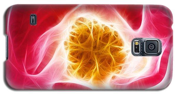 Pink Rose Fractal Galaxy S5 Case