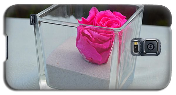 Pink Rose In Venice Galaxy S5 Case