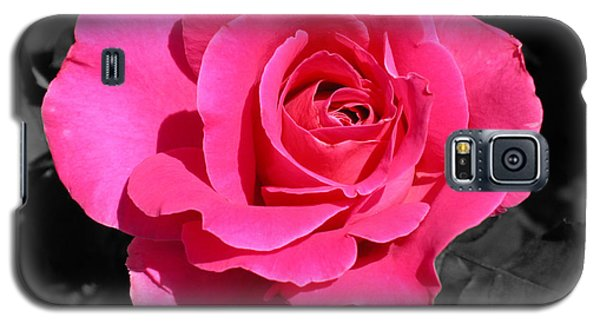 Perfect Pink Rose Galaxy S5 Case by Michael Bessler