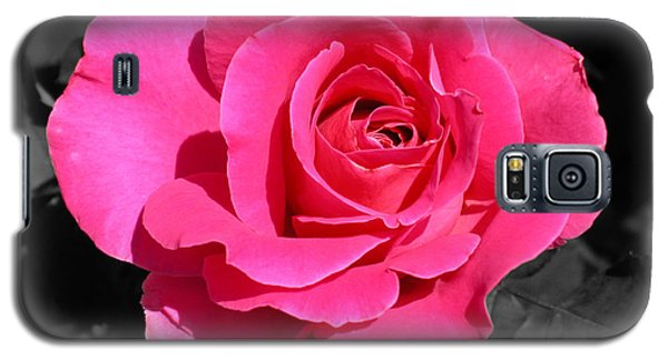 Perfect Pink Rose Galaxy S5 Case