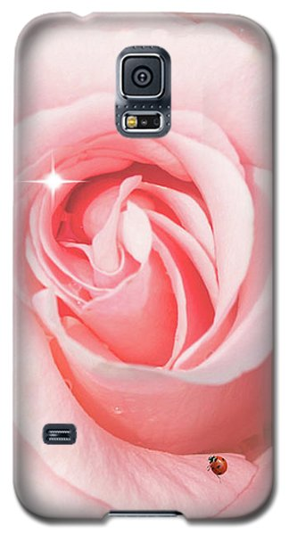 Pink Rose With Rain Drops Galaxy S5 Case