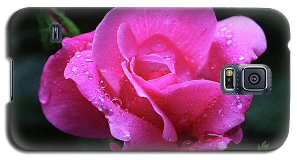 Pink Rose With Raindrops Galaxy S5 Case