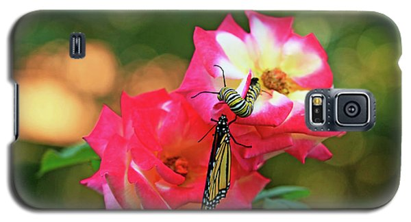 Pink Roses And Butterfly Photo Galaxy S5 Case by Luana K Perez