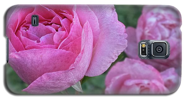 Pink Roses Galaxy S5 Case