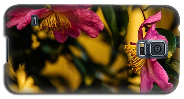 Pink Sasanquas  Galaxy S5 Case