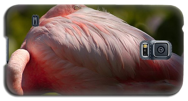 Pink Galaxy S5 Case by Sebastian Musial