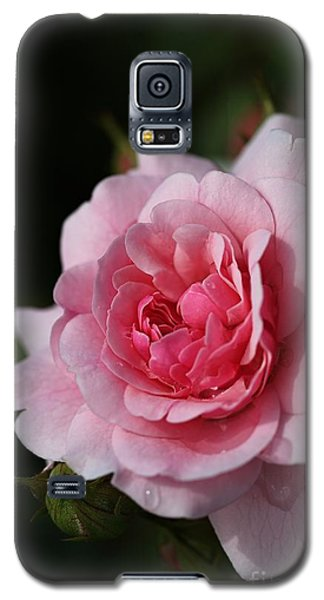 Pink Shades Of Rose Galaxy S5 Case