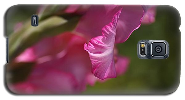 Pink Side Of Gladioli Galaxy S5 Case