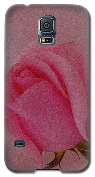 Pink Single Rose Galaxy S5 Case