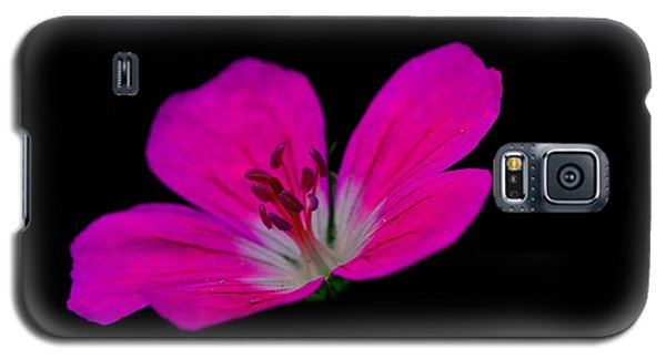 Pink Stamen Galaxy S5 Case by Richard Patmore