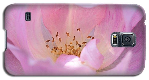 Pink Swirls Galaxy S5 Case