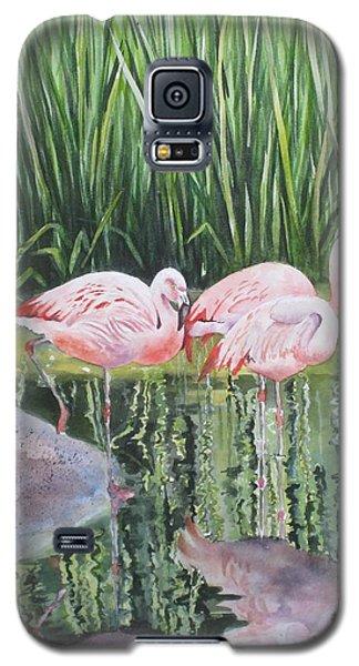 Pink Trio Galaxy S5 Case