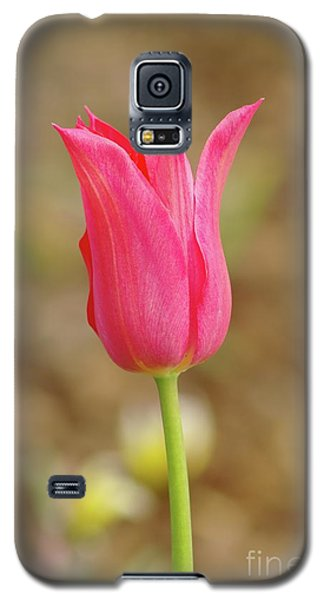 Galaxy S5 Case featuring the photograph Pink Tulip by Dariusz Gudowicz