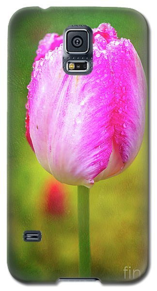 Pink Tulip In The Rain Galaxy S5 Case