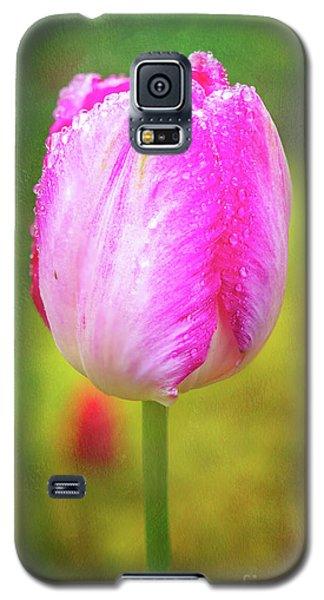 Pink Tulip In The Rain Galaxy S5 Case