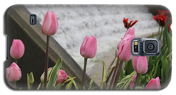 Pink Tulips Galaxy S5 Case
