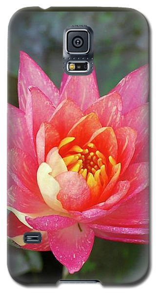 Pink Water Lily Beauty Galaxy S5 Case