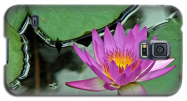 Galaxy S5 Case featuring the photograph Pink Water Lily by Judy Vincent