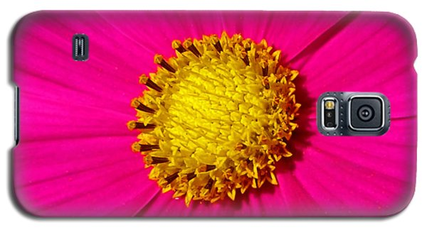 Galaxy S5 Case featuring the photograph Pink Wildflower 008 by George Bostian