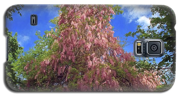 Galaxy S5 Case featuring the photograph Pink Wisteria by Donna Kennedy