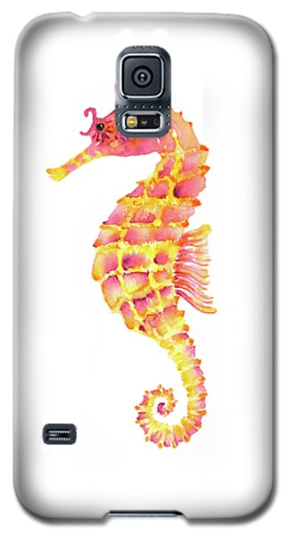 Pink Yellow Seahorse - Square Galaxy S5 Case by Amy Kirkpatrick