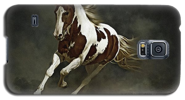 Pinto Horse In Motion Galaxy S5 Case
