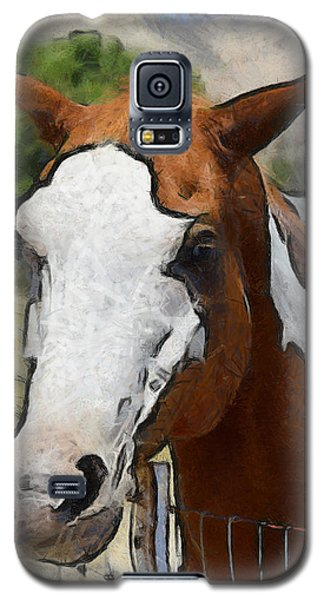 Galaxy S5 Case featuring the photograph Pinto In The Pasture Portrait  by Barbara Snyder
