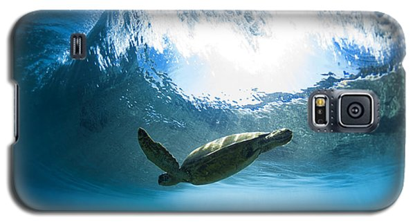 Pipe Turtle Glide Galaxy S5 Case by Sean Davey